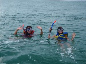 Dolphin tours snorkel trips panama city beach florida